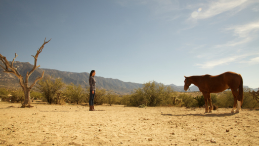 woman looking at horse in the arizona desert