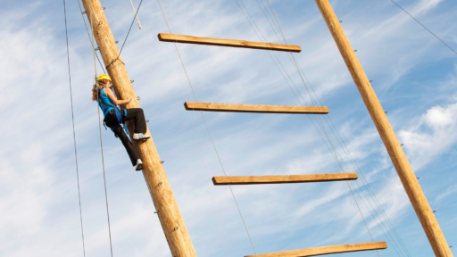 woman climbing tall wooden pole