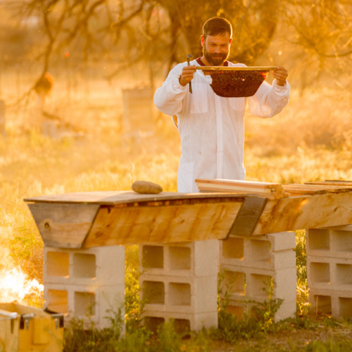 beekeeper at miraval arizona resort & spa