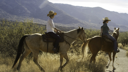 horseback riding near the mountains