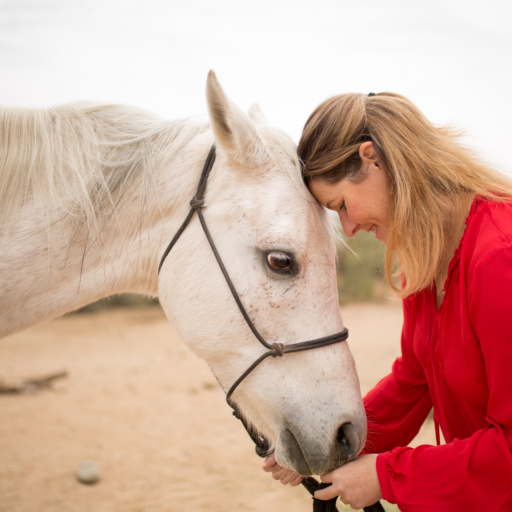 horse and woman share a quiet moment