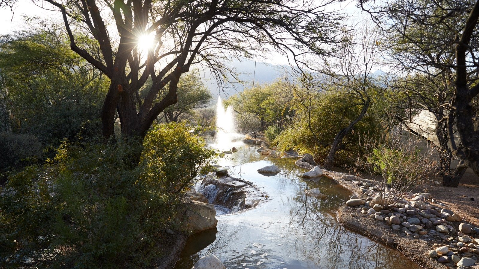 Beautiful view of a creek near our Tucson Spa Resort