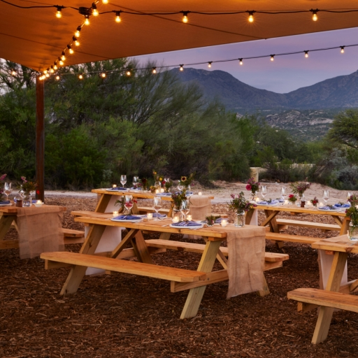 picnic tables setup for special event outdoors