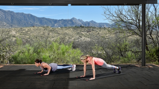 two women performing planks on yoga mats outdoors