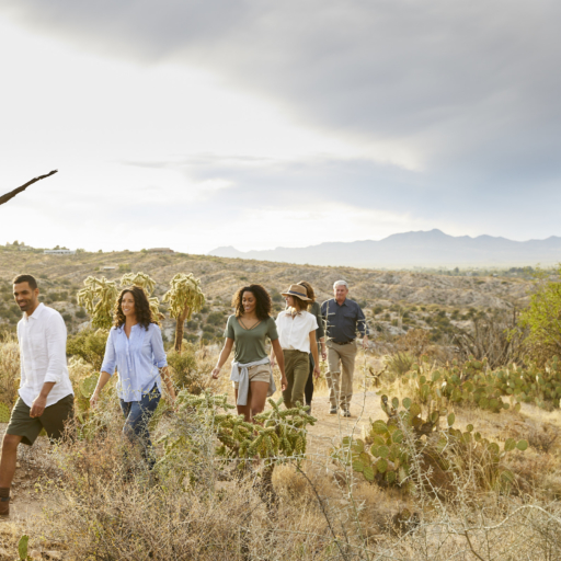 group walking through the desert near tucson arizona