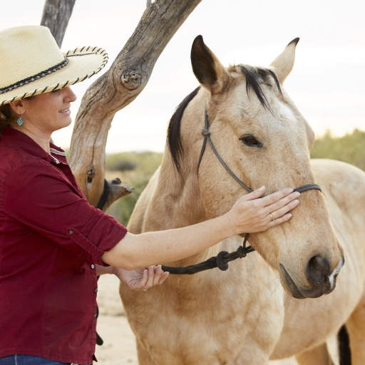 woman gently stroking a horse