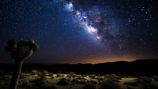 star-filled night sky over the desert