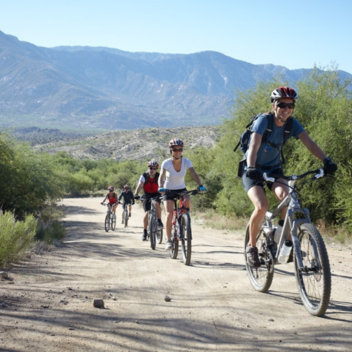 group riding mountain bikes down the mountain trail