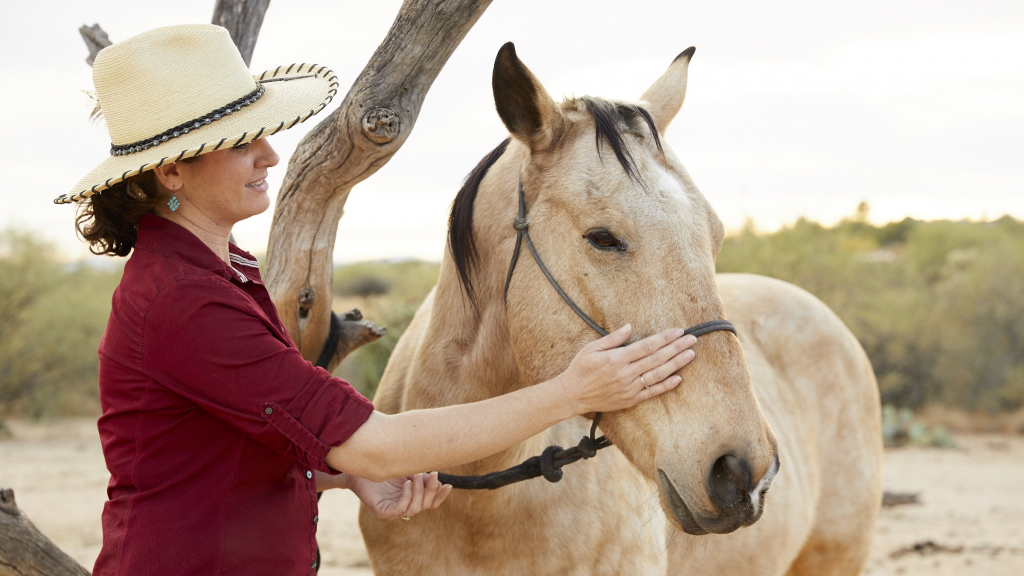 Woman petting a horse at our wellness retreat in Tucson, AZ